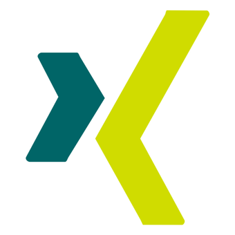 xing icon3